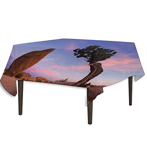 kangkaishi Americana Printed Tablecloth Bonsai Trees Twilight Blue Hour Peaceful Nature Rock Formation Outdoor and Indoor use W54.3 x L54.3 Inch Violet Blue Pink Light Brown