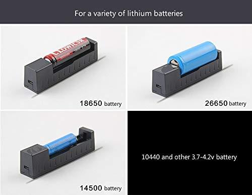 Amazon.com: WISSBLUE 18650/26650 - Cargador de batería ...