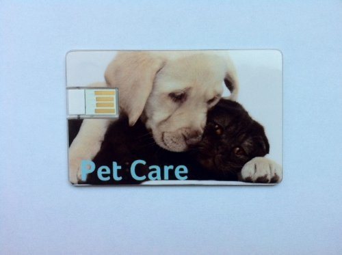 Price comparison product image Travel Stix Pet Care 2GB USB Flash Drive for Medical & Travel Docs on the Go Wallet USB