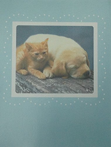 8-best-friends-kitten-and-puppy-blue-blank-notecards