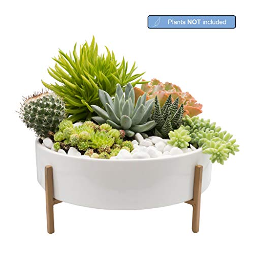 Mid Century Large Round Succulent Planter Bowl, 10 Inch White Ceramic Pot with Stand, Succulent Garden Shallow Pot, Dining Table Centerpiece, Cactus and Plant Container with Drainage (Metal Stand)