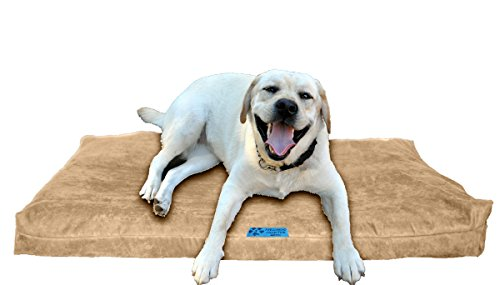 Five Diamond Collection Shredded Memory Foam Orthopedic Bed with Removable Washable Cover and Water Proof Inner Fabric, Large (40-Inch-by-35-Inch), Smokey Taupe Microfiber, for Dogs Review