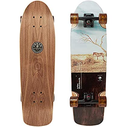 Image of Arbor Pilsner Photo 2019 Mini Longboard Skateboard Longboards