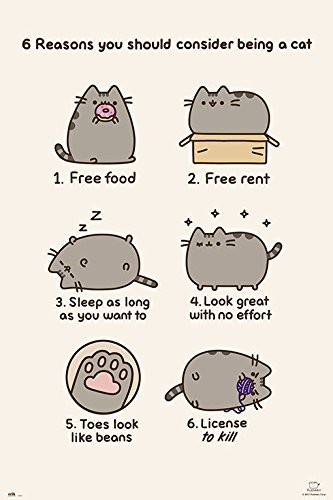 Pusheen The Cat - Poster / Print
