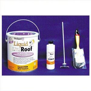 Amazon Com Liquid Rubber Roof Kit White 1 Gal Automotive