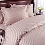 Blush Stripe Olympic Queen Size Duvet Cover Sheet Set - 300 Thread 100% Egyptian Cotton [Duvet Cover Sheets + 2 pillowcases]