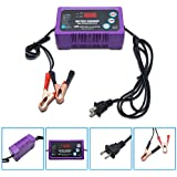 Automatic Battery Float Trickle Charger,2/6A 12V/24V Volt Portable External Battery Charger,LED display Indicator, Rescue and Recover Lead Acid Batteries