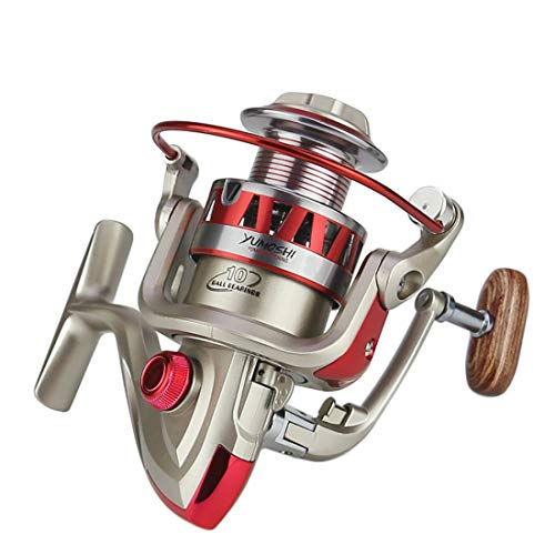 FELICIF Spinning Fishing Reel 10+1 Bearings Left Right Interchangeable Handle for Saltwater Freshwater Fishing with Double Drag Brake System (Size : 1000)