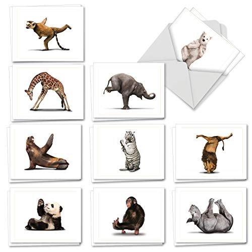 (Zoo Yoga - 20 All Occasion Note Cards with Envelope (4 x 5.12 Inch) - Assorted Animals, Boxed Greeting Notecard Set - Wildlife Stationery Card Gifts (2 Each, 10 Designs) AM6547OCB-B2x10)