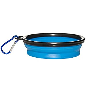 The Institute of Pet Nutrition Collapsible Silicone Dog Bowl (12 oz.) Indoor, Outdoor Food and Water Use   Portable, Travel-Friendly Design   Walks, Travel, Hiking, Car Trips   Inc. Carabiner (Blue)