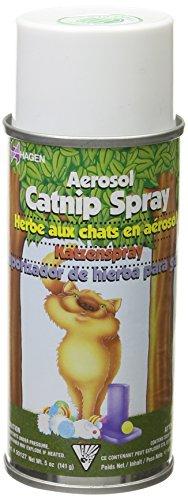 Catit Catnip Garden Catnip Spray by Catit