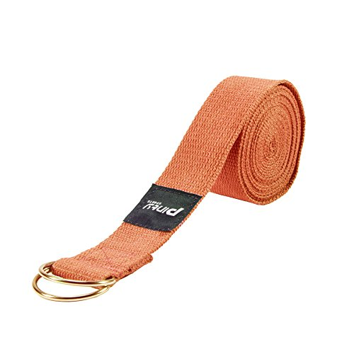 Pinty Yoga Exercise Strap 8ft, 10ft w/Adjustable D-Ring Buckle for Fitness, Stretching, Flexibility and Physical Therapy (Red, 10ft)