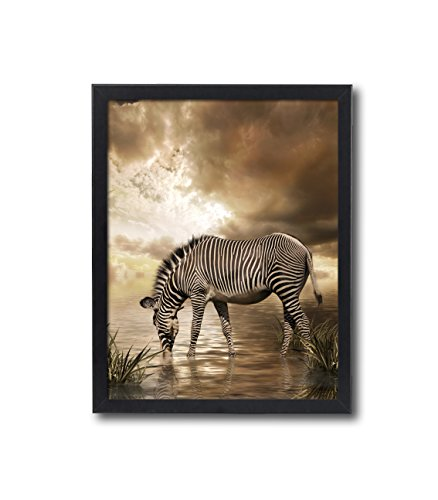 Natural art – Zebra Dringking Water Photos Prints on Canvas Wall Decoration with Black Frame 12×16inches Chirstmas Holiday Home Gift