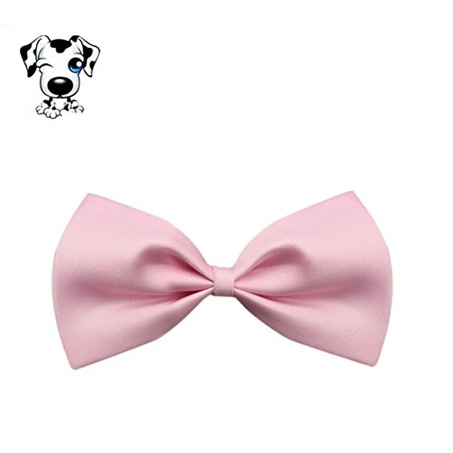 Chien-Chat-Cravate-Amison-Cool-Charmant-Chiot-Animaux-Collier-Nud-Papillon-Rose