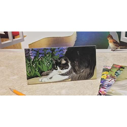 """80%OFF Ceramic Tile, Cat, Size 4""""x6"""", 32262 BY ACK"""