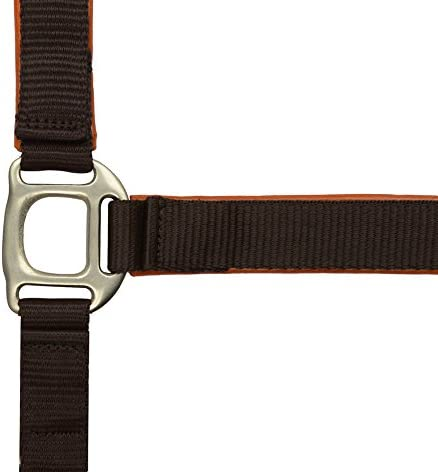 Norton Unisexs 510618304 Synthetic Lined Headcollar Brown One Size
