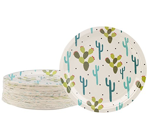 Disposable Plates  80Count Paper Plates Cactus Party Supplies for Appetizer Lunch Dinner and Dessert Kids Birthdays 9 x 9 inches
