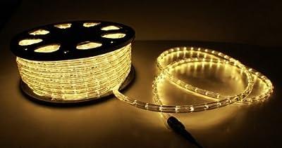GotHobby 150'ft Warm White 2-Wire LED Rope Light Flexible Home Outdoor Christmas Lighting 110v