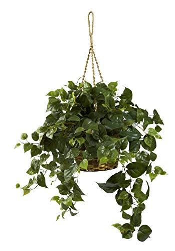 Artificial Plant -Philo Hanging Basket Silk Plant -