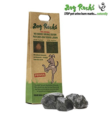 - Dog Rocks - 100% Natural Grass Burn Prevention - Prevents Lawn Urine Stains - Small Bag - 2 Month Supply