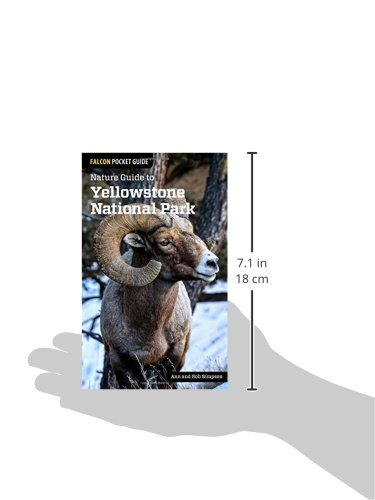 Nature Guide to Yellowstone National Park (Nature Guides to National Parks Series)