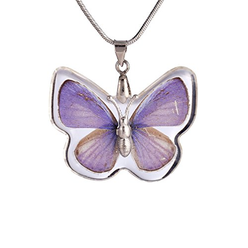 FM42 Butterfly Necklace 3 52 5CM BN1015 product image