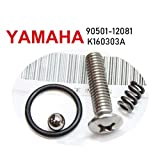 YAMAHA BANSHEE Kickstarter Kick No Rattles Kicker Rebuild Kit TIGHT 1987-2006