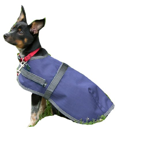 High Spirit Dog Rain Coat, 32-Inch, Navy/Gray