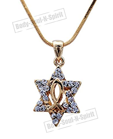 Star of David Magen Soul CHRISTIAN FISH Pendant Necklace LUCKY Judaica Holy Gift - Soul Fish