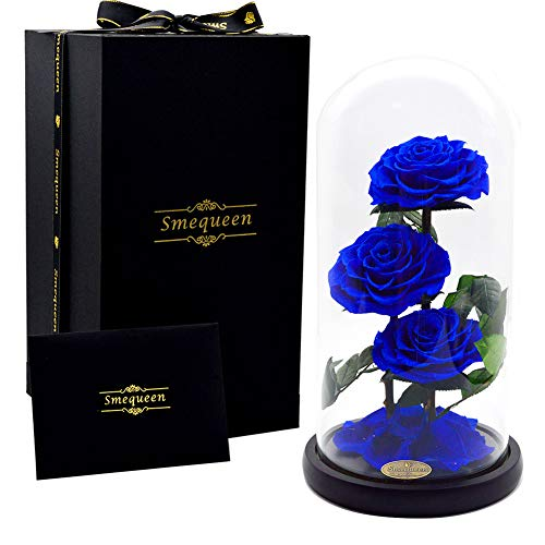 Smequeen Preserved Rose Never Withered Roses Flower in Glass Dome, Gift for Valentine's Day Anniversary Birthday (Blue 2) (Flower Glass Blue)