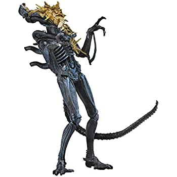 Collectibles Neca Exploding Head Battle Damaged Alien Warrior Figure Avp Predator