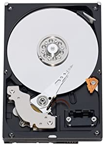 Western Digital Caviar Blue 320 GB Bulk/OEM Hard Drive 3.5 Inch, 8 MB Cache, 7200 RPM SATA II WD3200AAJS by Western Digital