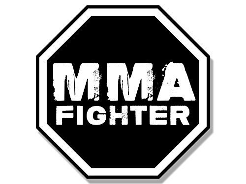 Octagon Shaped Magnet - GHaynes Distributing Octagon Shaped MMA FIGHTER Sticker Decal (martial arts fight ufc) 4 x 4 inch
