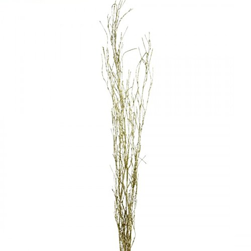 Branch Tree Gold (Shinoda Design Center 5 Piece/2 Piece Glitter Natural Bamboo Stem Set, 18-24