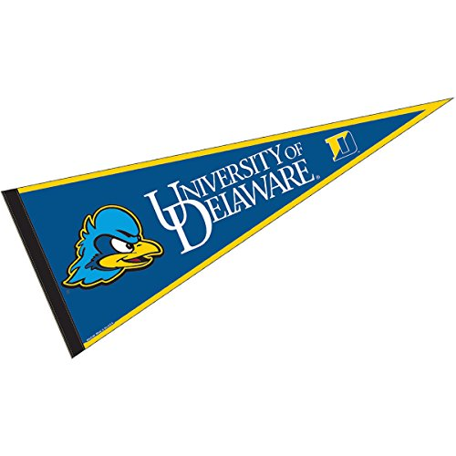 College Flags and Banners Co. University of Delaware Pennant Full Size Felt