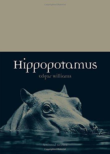 (Hippopotamus (Animal))