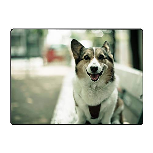 Dog Door Mat Floor Mat Rug Indoor/Outdoor/Front Door/Bathroom -