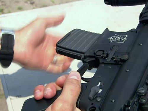 (Caliber Gun Target)