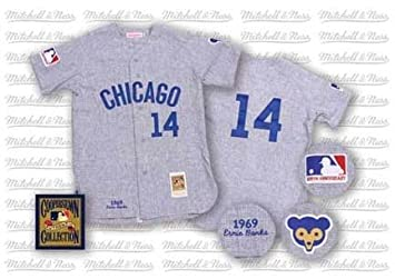 new products bdb28 992e9 Ernie Banks 1969 Chicago Cubs #14 Authentic Road Throwback ...