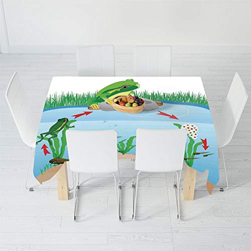 TecBillion No Fading Tablecloth,Animal Decor,for Table Outdoor Picnic Holiday Dinner,40.2 X 20.1 Inch,Life Cycle of Tropic Tree Frog Presents