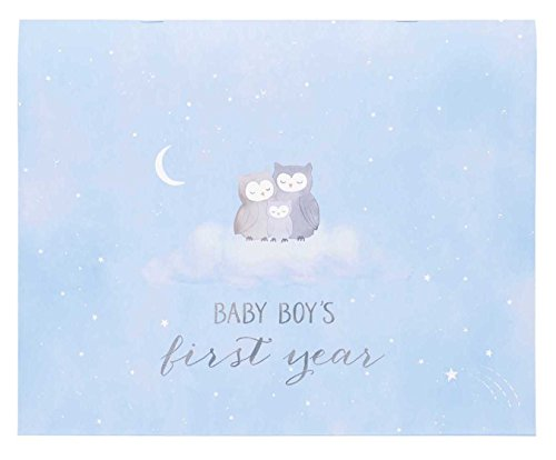 C.R. Gibson Baby's First Year Calendar, By Carter's Stickers Provided, Measures 11 x 18