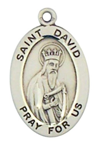 Sterling Silver Patron Saint David Oval Medal Pendant, 7/8 ()