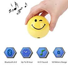 Bluetooth Laptop Speaker Heavy Bass Small Size Built in Microphone Handsfree Calling Micro SD Card 8 Hrs Playtime Hifi Sound(Winkingeye)