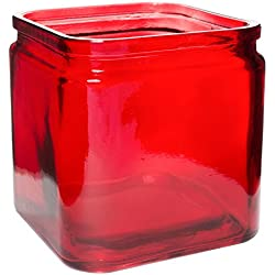 "Royal Imports Flower Rose Glass Lip Cube Vase Decorative Centerpiece Home Wedding - 5"" Tall, 5"" Opening, Red, Pack of 2"