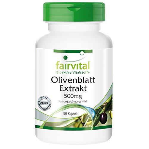 Olivenblatt Extrakt 500mg - 90 Kapseln - vegetarisch - 2,5-fach höhere antioxidative Aktivität als Vitamin C und E