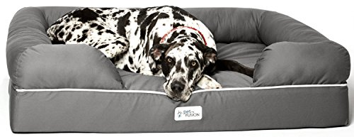 PetFusion Jumbo Dog Bed w/Solid 6' Memory Foam, Waterproof Liner, YKK Premium Zippers. [Gray,...