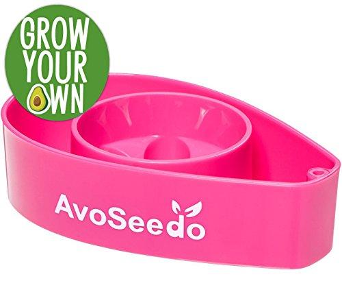 AvoSeedo Bowl Grow Your Own Avocado Tree, Evergreen, Perfect Avocado Tree Growing Kit for Every Avocado Lover - Pink