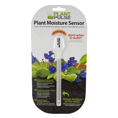 Plastair PLANT-MS-CAT Plant Pulse L.E.D. Plant Moisture Sensor, White : Soil Testers : Garden & Outdoor