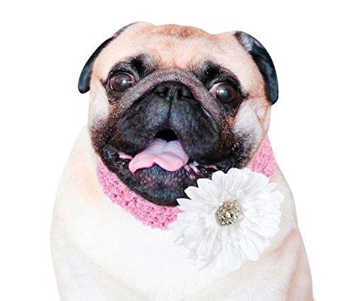 Multi Pink Rhinestone Party Collar - Lillian Rose Wedding Party Flower Dog Collar