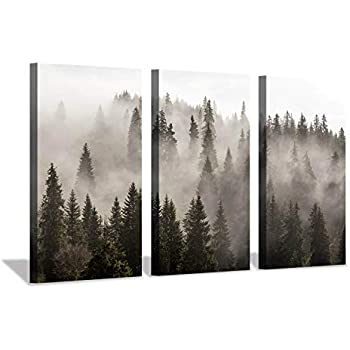 Hardy Gallery Foggy Forest Picture Wall Art: Landscape Painting Misty Pine Trees Artwork Print on Canvas for Living Rooms Office (34